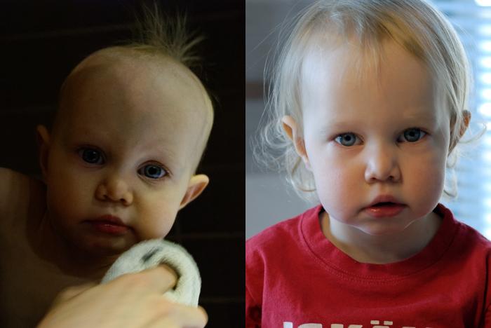 julia_2015_2016_comparison